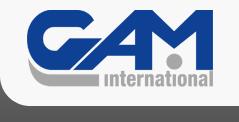 Логотип бренда GAM